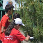 Конкурс «Юный эколог-краевед»