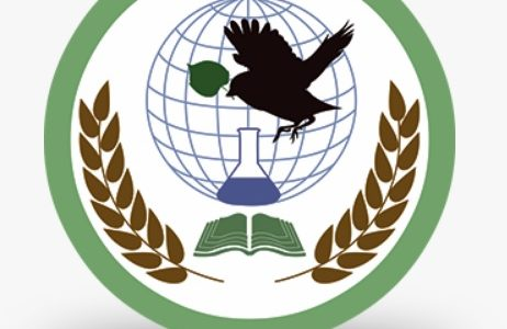 педагоги ЭБЦ - дипломанты конкурса методических программ и материалов