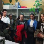 Экскурсия в Институт сельского хозяйства: изучаем основы генетики