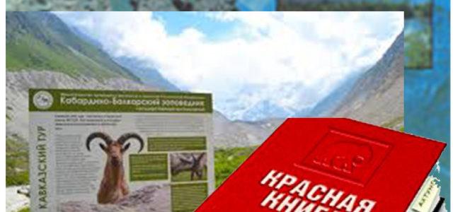 Республиканская заочная онлайн-олимпиада школьников «Природа Кабардино-Балкарии»