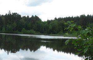 Единые дни защиты малых рек и водоемов